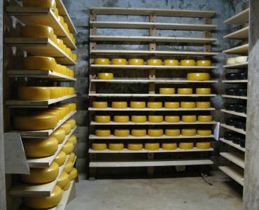 oude-kaas.jpg