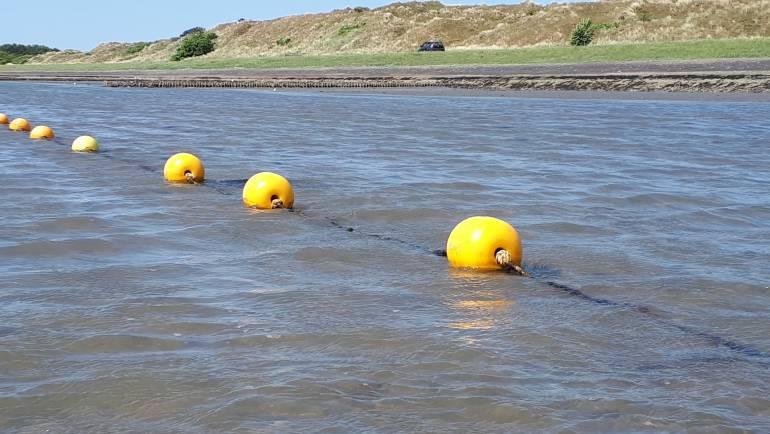 Vacature: medewerk(st)er zeewierteelt